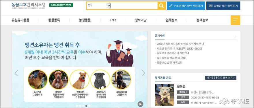 충남도, 성숙한 반려동물 문화 조성을 위한 홍보캠페인 실시 8