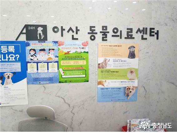 충남도, 성숙한 반려동물 문화 조성을 위한 홍보캠페인 실시 12