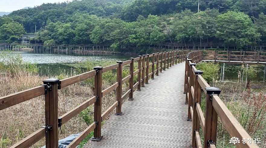 천흥저수지 수변데크 산책로 3.