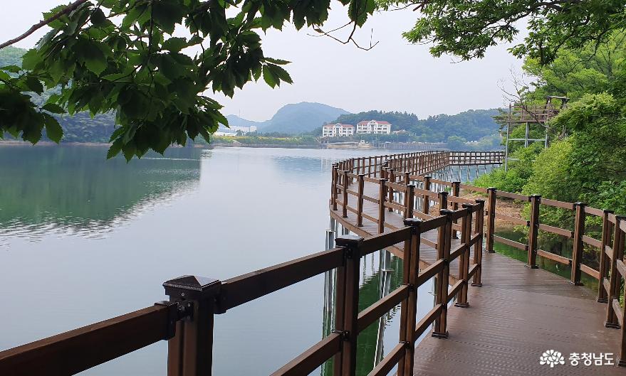 천흥저수지 수변데크 산책로 6.