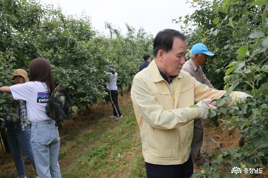 충남교육청, 코로나19 극복 위한 농촌 일손돕기 나서