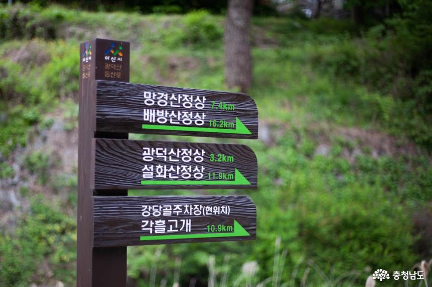 더워진 날씨, 나무와 숲의 고마움을 느끼게 해 주는 광덕산