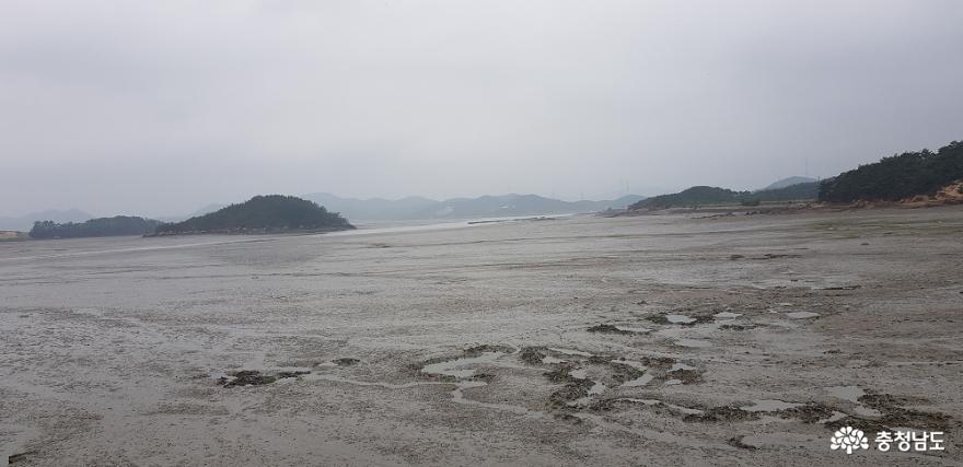 가로림만 일대 국가해양정원센터로 머지않아 조성 4