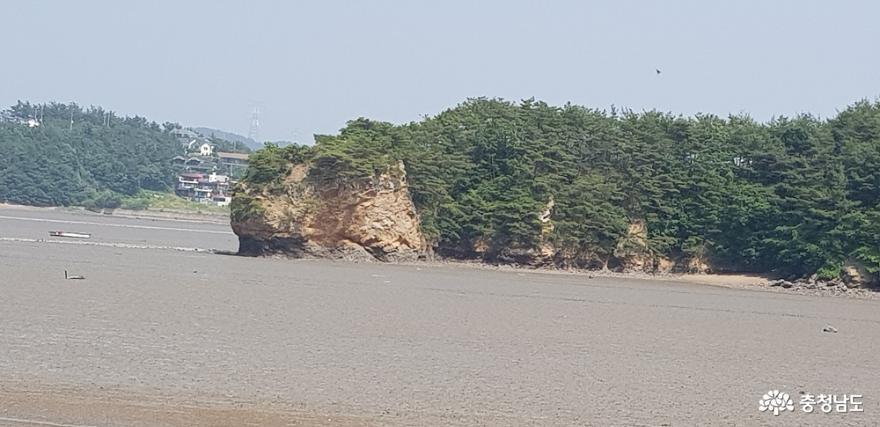 가로림만 일대 국가해양정원센터로 머지않아 조성 14