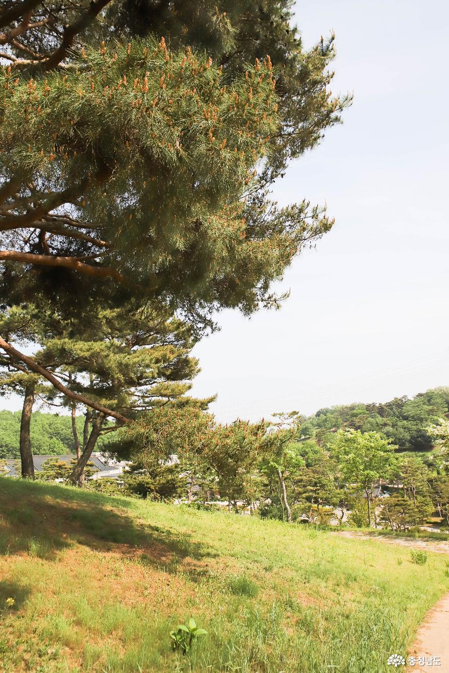 충혼공원 안의 계백 장군 6