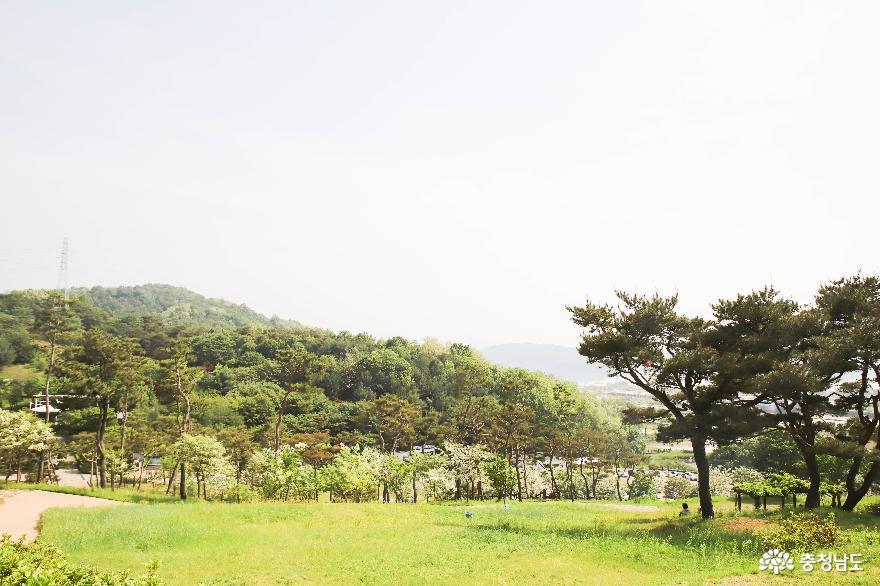 충혼공원 안의 계백 장군 7