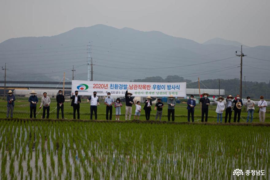천안 풍세면, 친환경농업으로 농업소득 크게 늘어