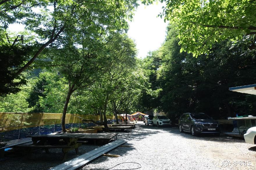 천안 호두나무캠핑장에서 캠핑을 즐기다
