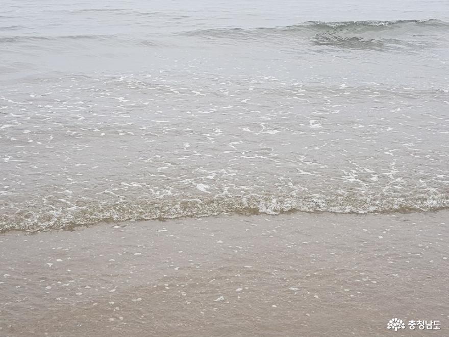 평일에 방문한 삼봉해수욕장 14