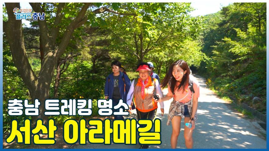 [오감만족]충남 트레킹 명소 - 서산 아라메길