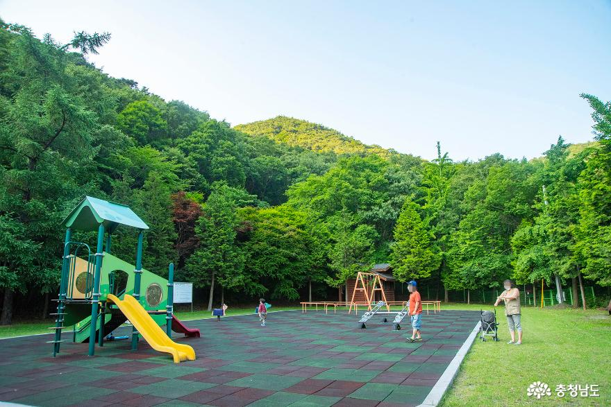 편백나무숲에서의 편안한 휴식, 보령 성주산자연휴양림 13