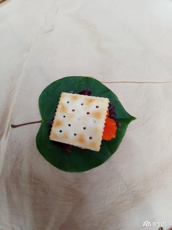직접 가꾼 텃밭 식물로 크래커 샌드위치를 만들었어요 7