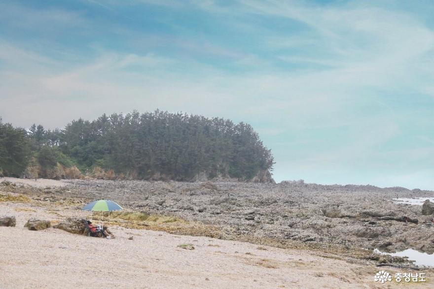 태안의 조용한 해변 파도리
