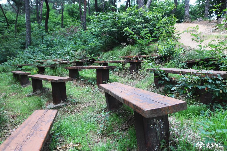 숲속 야외 학습장
