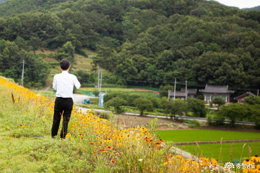 천안 출신 독립지도자 이동녕 선생과 루드베키아를 만날 수 있는 목천여행 사진