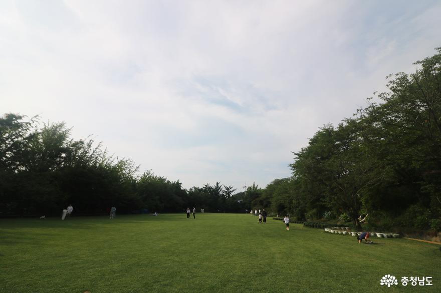 초록 잔디 곱게 깔린 운동장