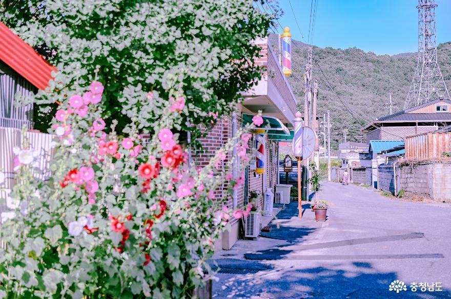 충현서원에서 송곡지까지의 산책 사진