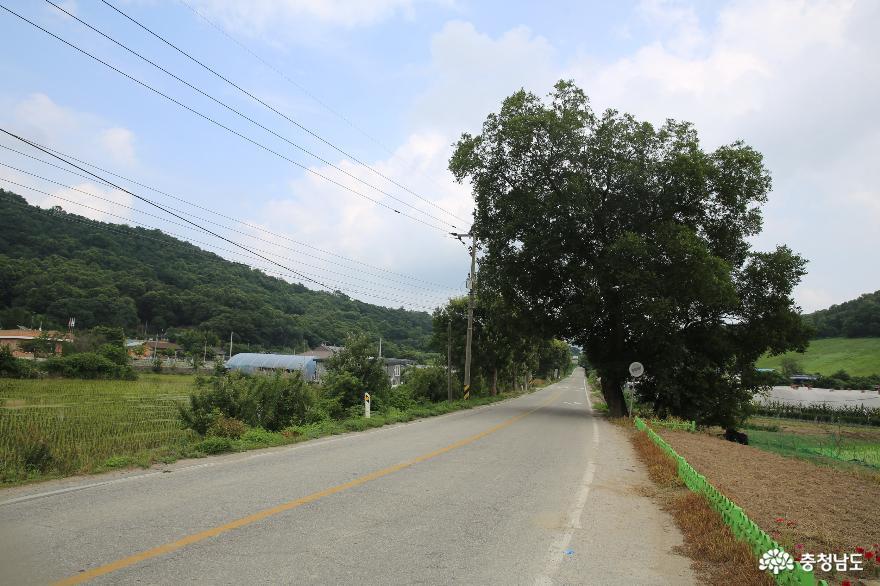 조선시대 삼남을 연결했던 교통의 요지의 경천역