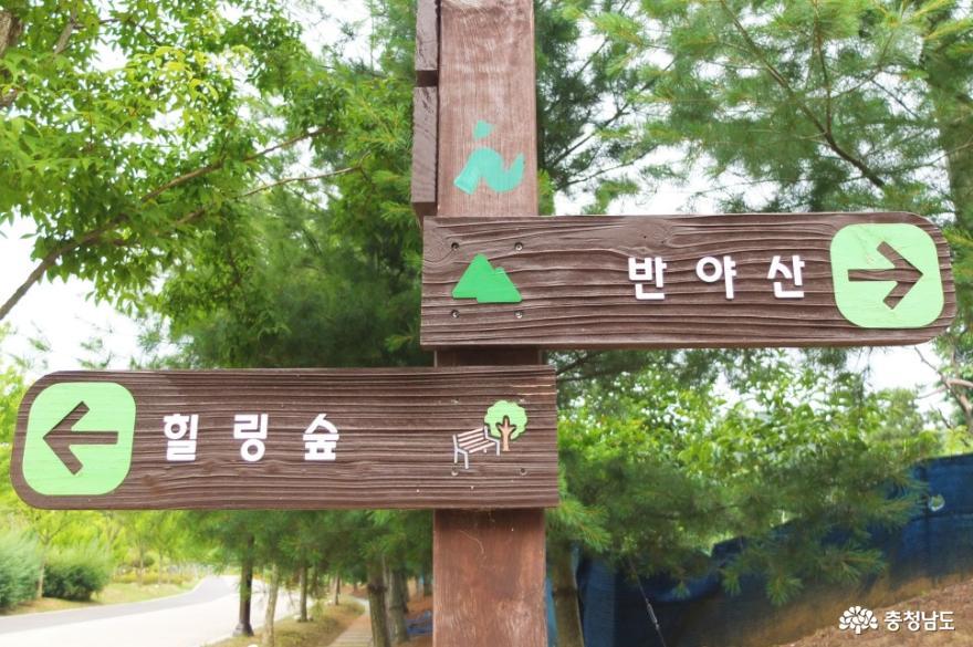 논산시민공원과 관촉사를 잇는 반야산 산책길 걷기 4
