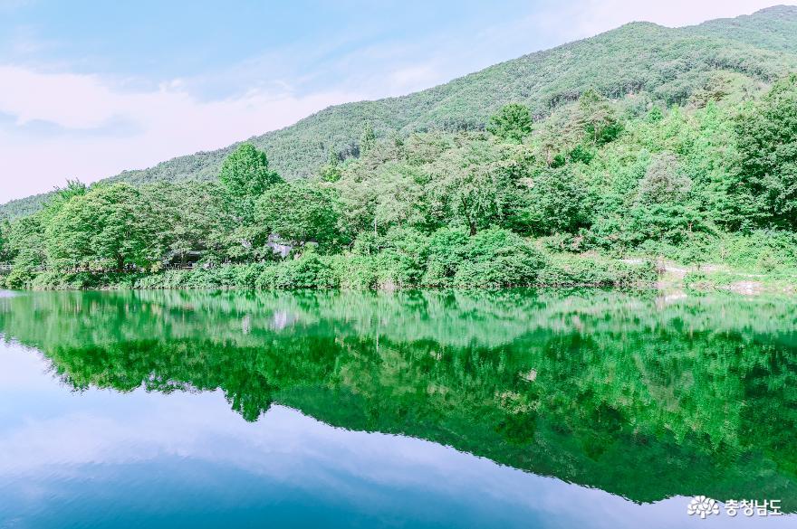 충현서원에서 송곡지까지의 산책