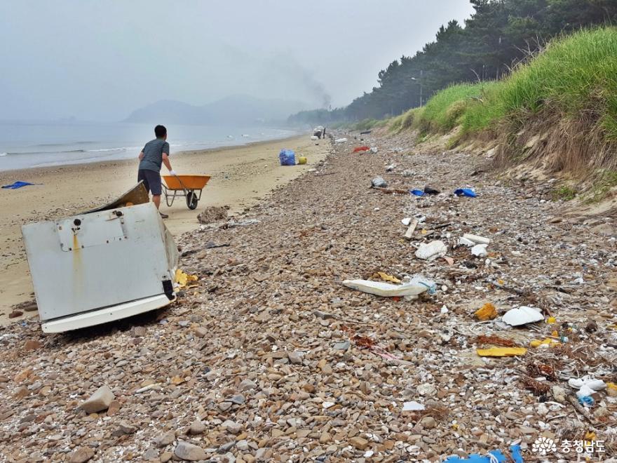 버려진 쓰레기를 치우고 있는 밧개해수욕장 지역주민들