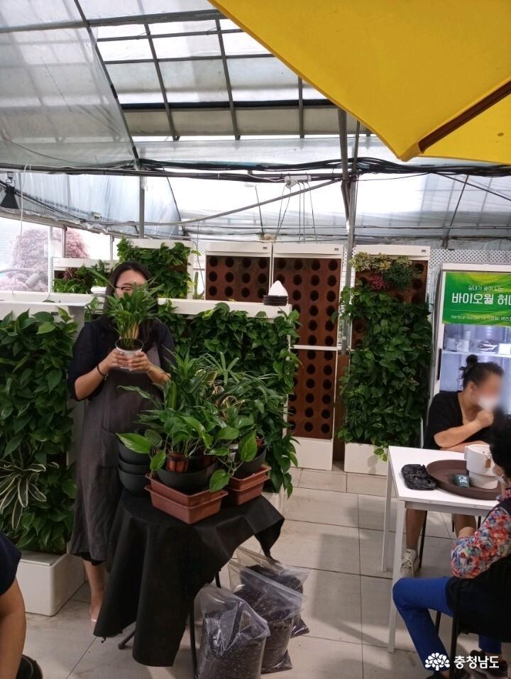 식물병원 '식물에서'에서 식물심기 체험하며 힐링했어요 4