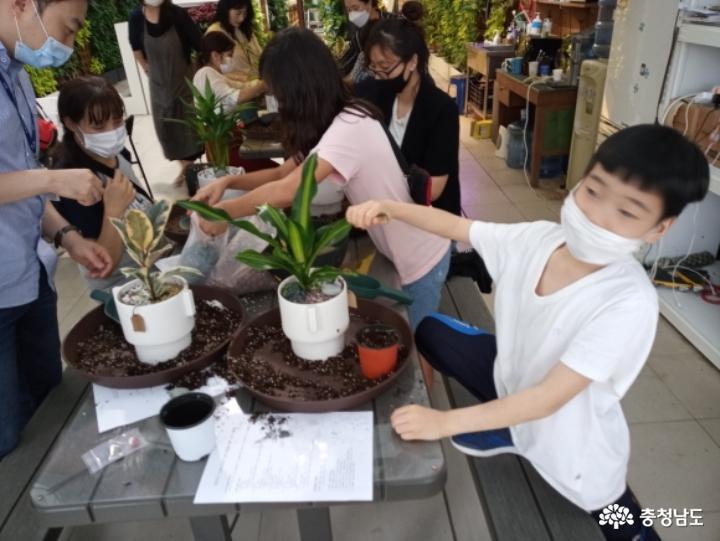 식물병원 '식물에서'에서 식물심기 체험하며 힐링했어요 6