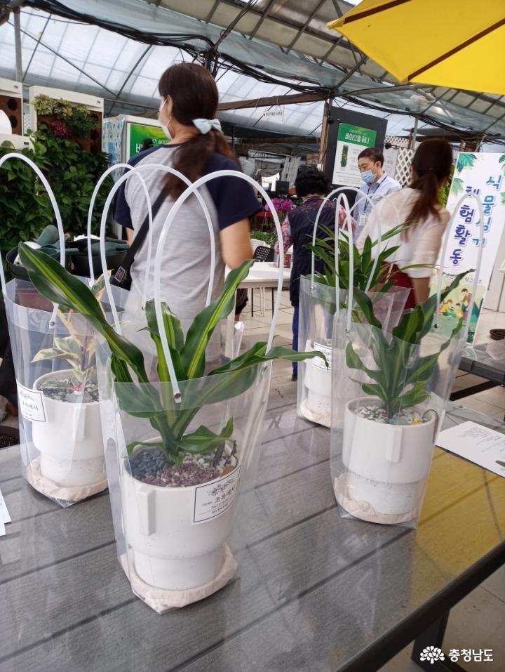 식물병원 '식물에서'에서 식물심기 체험하며 힐링했어요 9