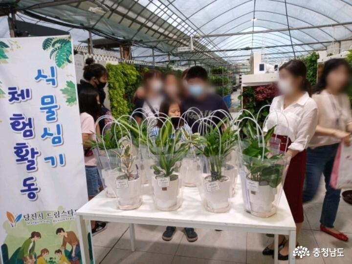 식물병원 '식물에서'에서 식물심기 체험하며 힐링했어요 10