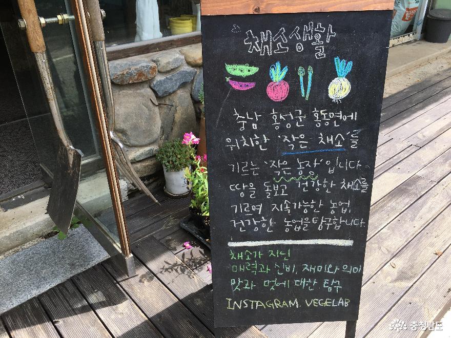 채소의 다양한 매력과 만날 수 있는 '채소생활'