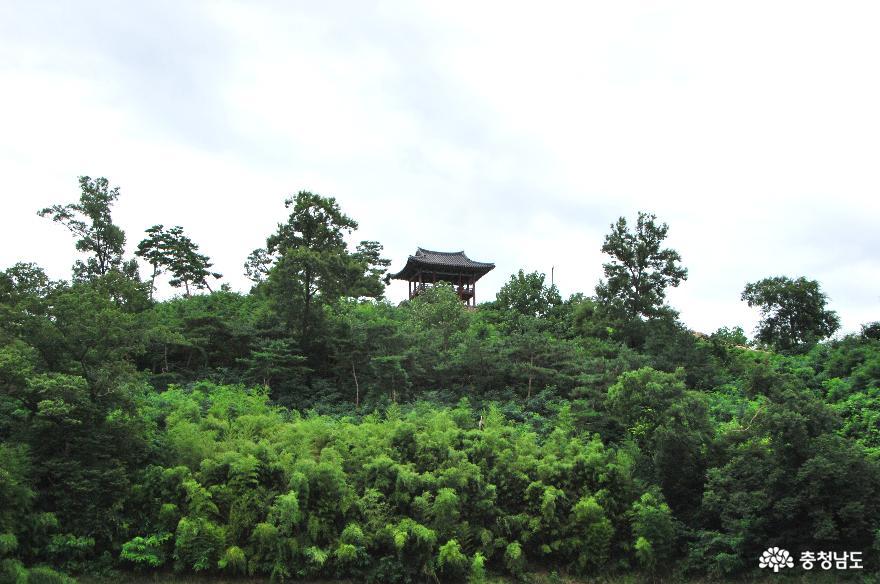 공산정(관망대)이 보이는 풍경