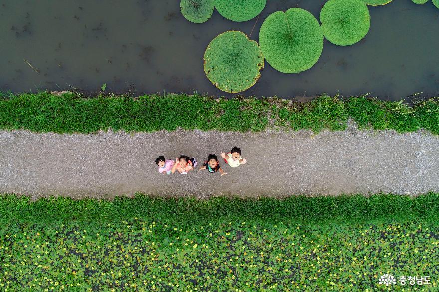 연밭에서 만난 해맑은 아이들
