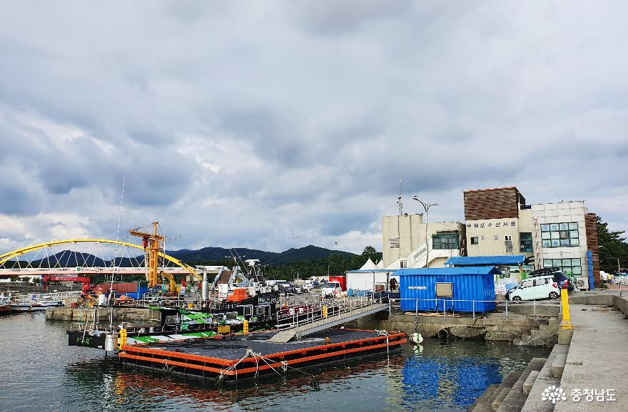 싱싱한 수산물 천국 무창포수산시장 3