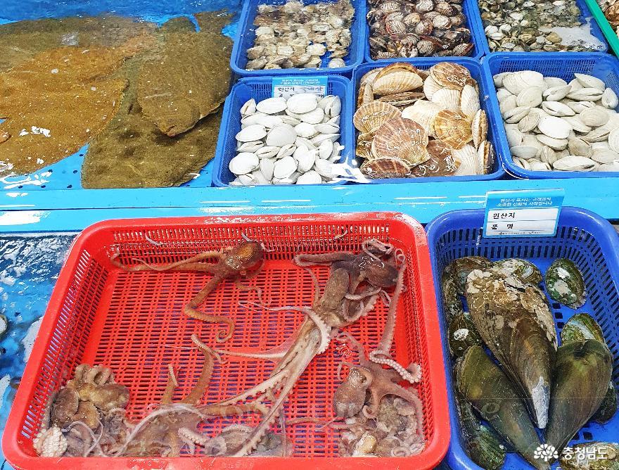 싱싱한 수산물 천국 무창포수산시장 6