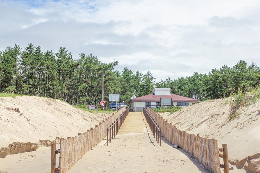 태안국립공원 기지포해안사구 4