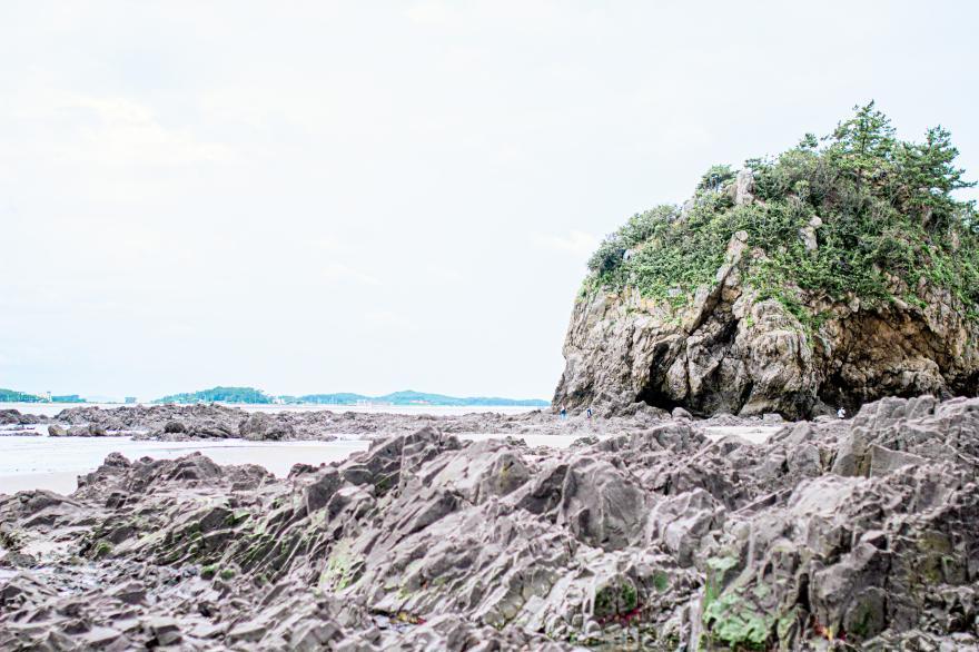 태안국립공원 기지포해안사구 10