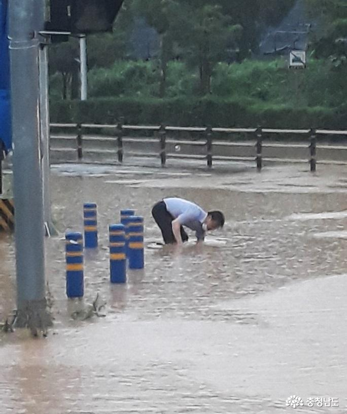 계룡시청 공무원들, 재난예방 솔선수범 '화제'