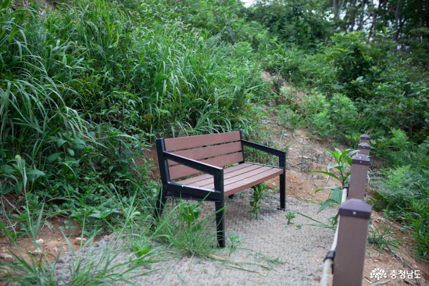 철저한 방역으로 피서객의 안전을 지키는 당진 왜목마을 13