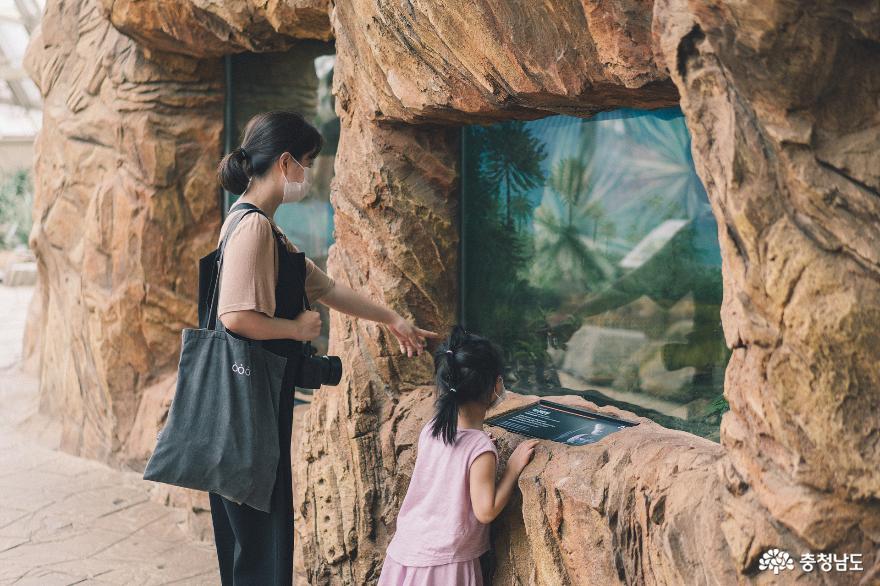 아이와 함께 떠난 여행, 서천 국립생태원 1