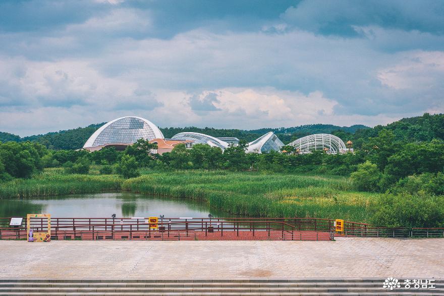 아이와 함께 떠난 여행, 서천 국립생태원 2