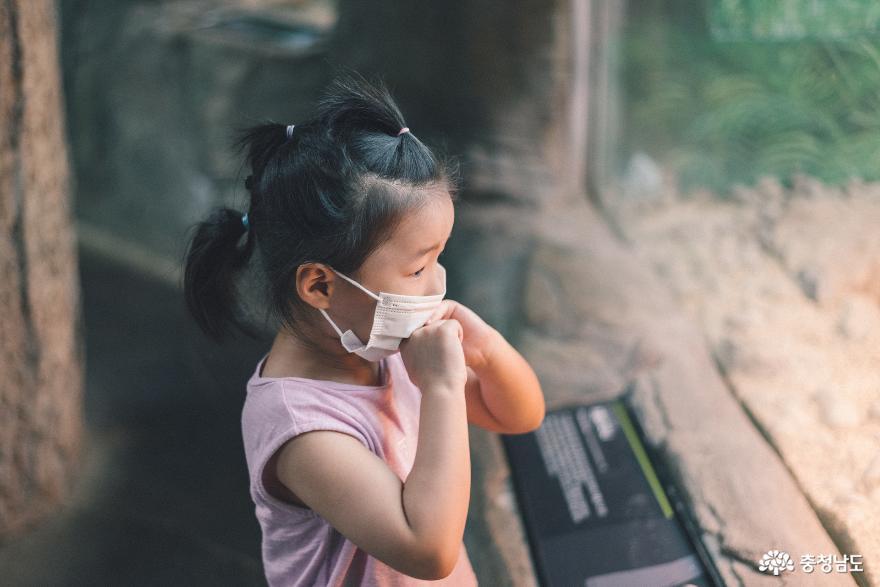 아이와 함께 떠난 여행, 서천 국립생태원 6