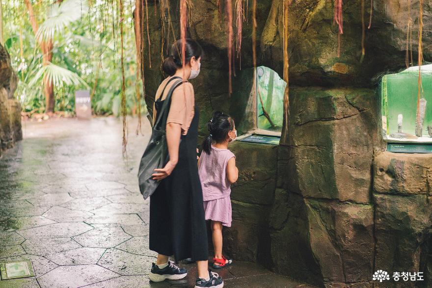 아이와 함께 떠난 여행, 서천 국립생태원 8