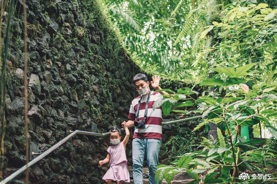아이와 함께 떠난 여행, 서천 국립생태원 10