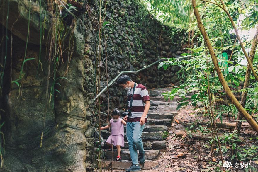 아이와 함께 떠난 여행, 서천 국립생태원 11