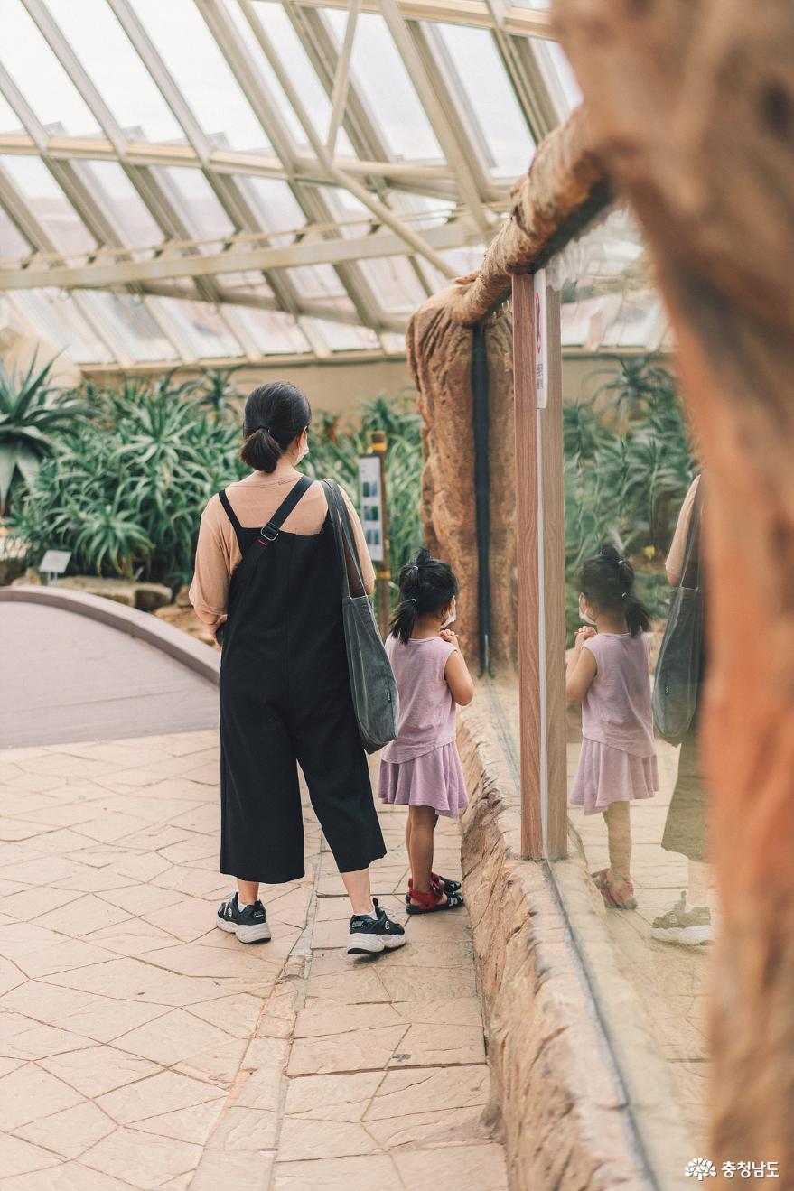 아이와 함께 떠난 여행, 서천 국립생태원 13