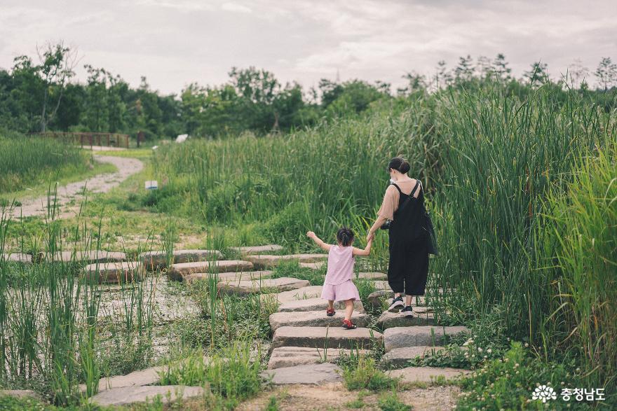아이와 함께 떠난 여행, 서천 국립생태원 18