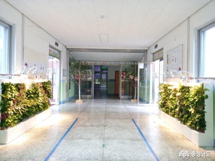 당진중학교에 식물공기청정기 바이오월이 설치되었어요 1