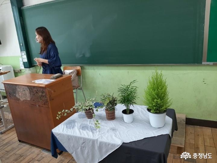 당진중학교에 식물공기청정기 바이오월이 설치되었어요 2