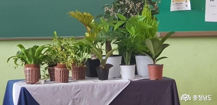 당진중학교에 식물공기청정기 바이오월이 설치되었어요 3