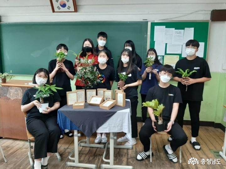 당진중학교에 식물공기청정기 바이오월이 설치되었어요 5